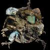 Boule de terre avec artéfacts archéologiques : assiette, bouteille, vase, pipe, fourchette, pointe de projectile, brosse à dents, ainsi que branches et mousse.